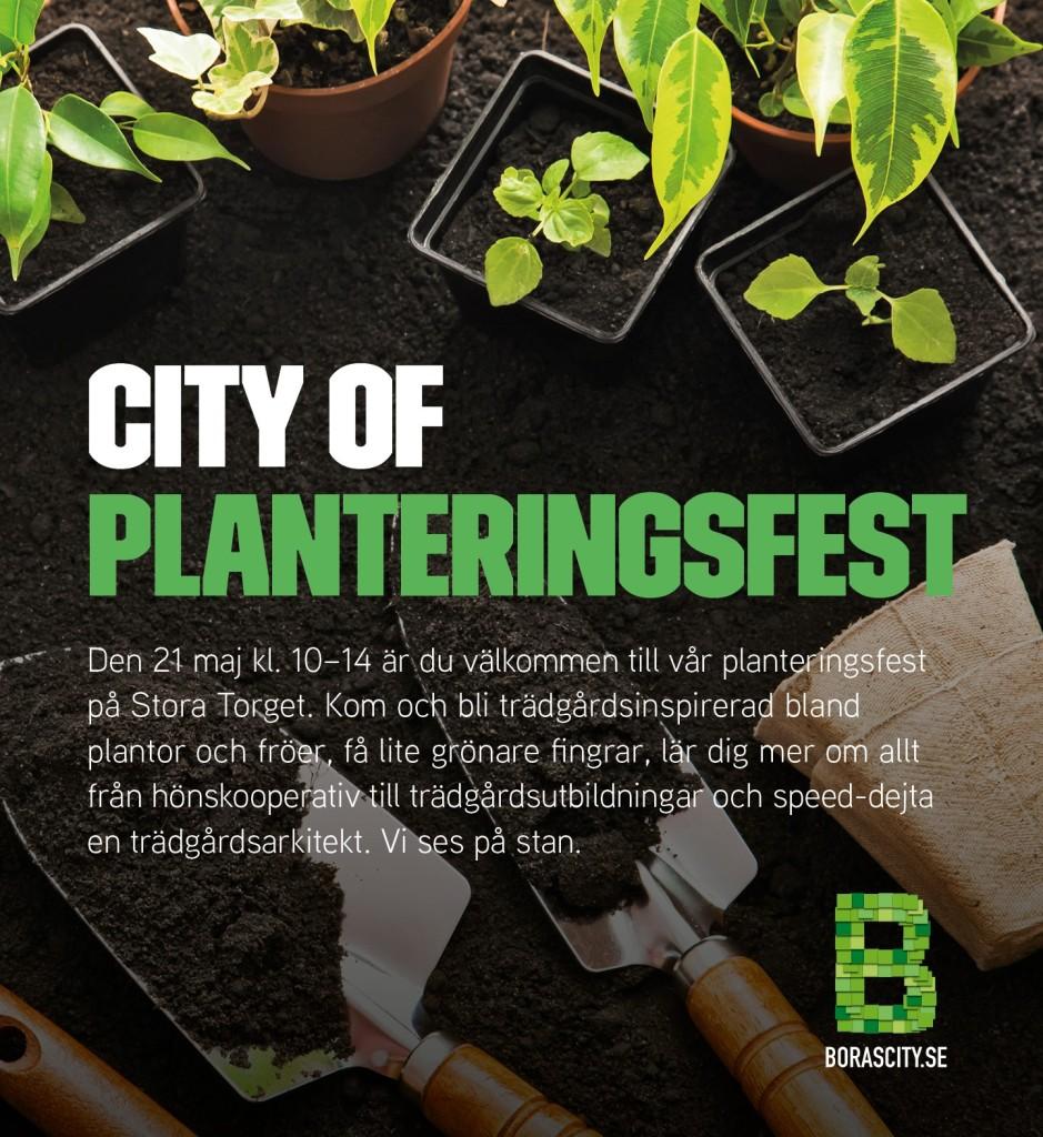 Planteringsfest 21 maj på Stora Torget